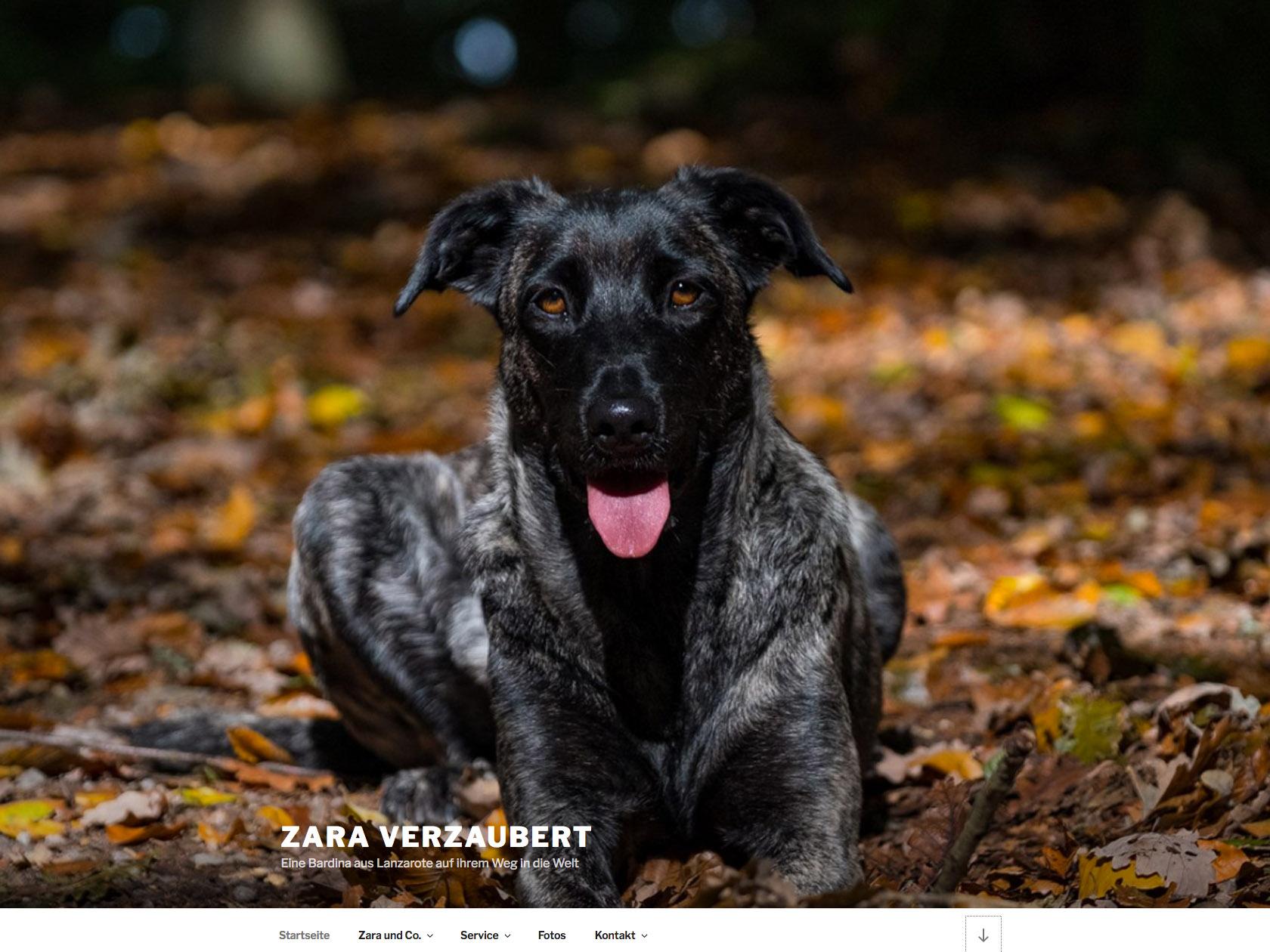 Zara Verzaubert